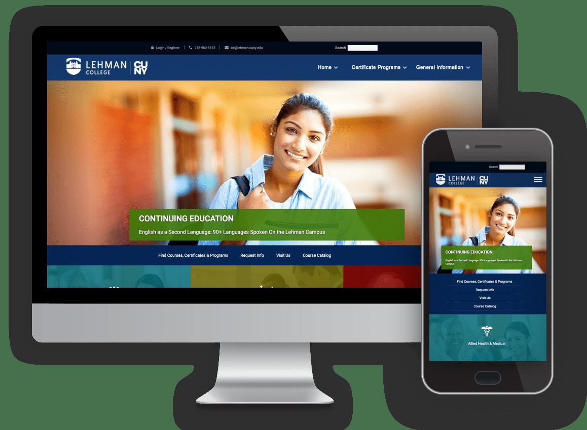 case study of website redesign, SEO, digital marketing platform by Digital Jibe for New York Professional Studies school